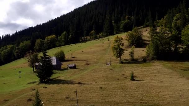 Aerial view Carpathian mountings in summer. Carpathian nature, spruces. Aerial view ukrainian carpathian villages, flock of sheep, sheep farm