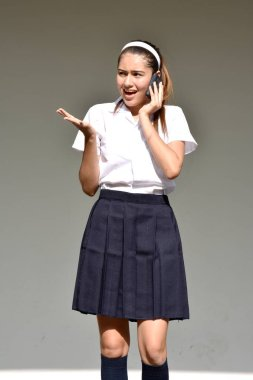 Female Using Cell Phone And Unhappy Wearing Skirt