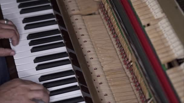Musician plays open piano, diagonal medium shot with shallow depth of field