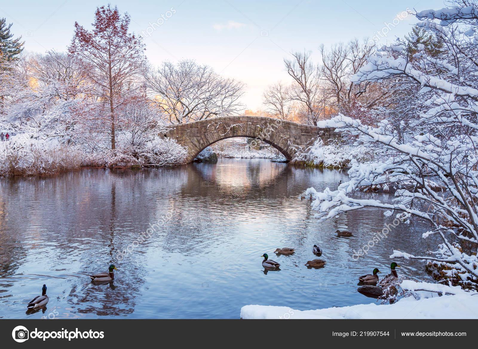 Central Park New York Usa Winter Mit Schnee Bedeckt Gapstow
