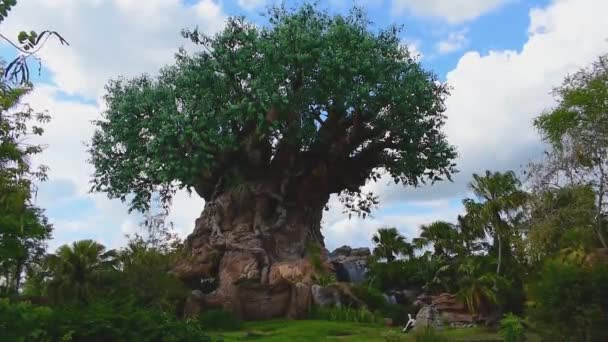 Orlando, Florida. May 02, 2019. Panoramic view of Tree of Life at Animal KIngdom