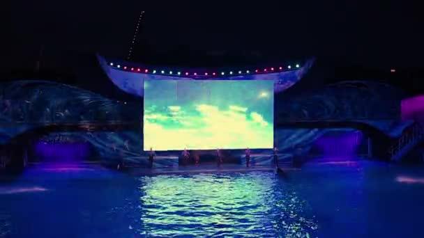 Skvělý skok velryb v Shamu oslava světlo v noci na oslavě Šamu světlo vzhůru po noci v moři (2