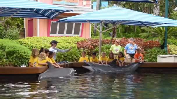 Orlando, Florida. 12. července 2019. Děti v letním táboře vystrojí delfína v Seawordu. 2