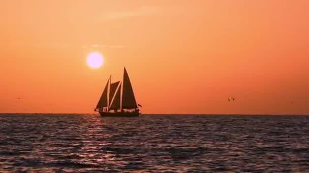 Clearwater Beach, Florida. Július 09, 2019. Vitorlás hajózás a horizonton, miközben Pelikán leereszkedik vertiginously..