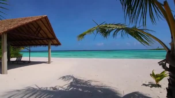 Coming to the sandy beach in the Maldives, palm trees, waves, azure sea. Exotic, tropical beach.