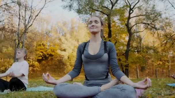 Gruppe junger Frauen, die Yoga-Übungen machen, bewegen sich gesund im Park. Konzept für gesunden Lebensstil.