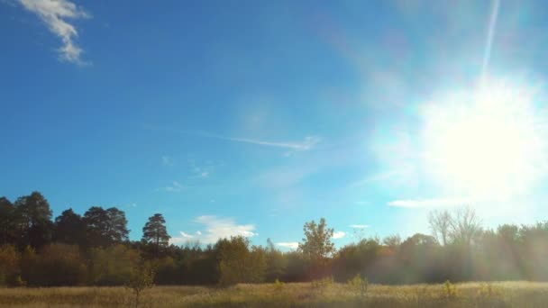 Beautiful sunlight in blue sky over forest and meadow.