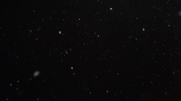 Looped footage of white snow falling from night sky, seamless, 4k pro res.