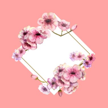 Cherry blossom, Sakura Branch with pink flowers in gold frame with beautiful pink background. Image of spring. Frame. Watercolor illustration. Design element. Diamond-shaped frame