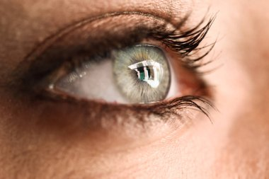 Close-up of beautiful young woman's eye. Beauty concept.