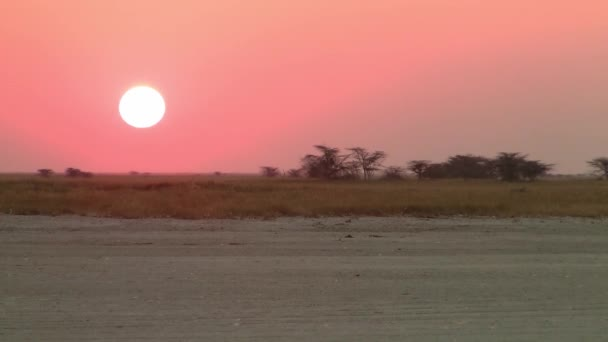 Naplemente a Makgadikgadi sós edények, Sowa Pan. Romantikus, gyönyörű Alkonyat.