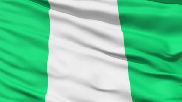 Closeup cropped view of a fluttering national flag of Nigeria