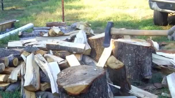 Mann spaltet Baumstämme für Brennholz