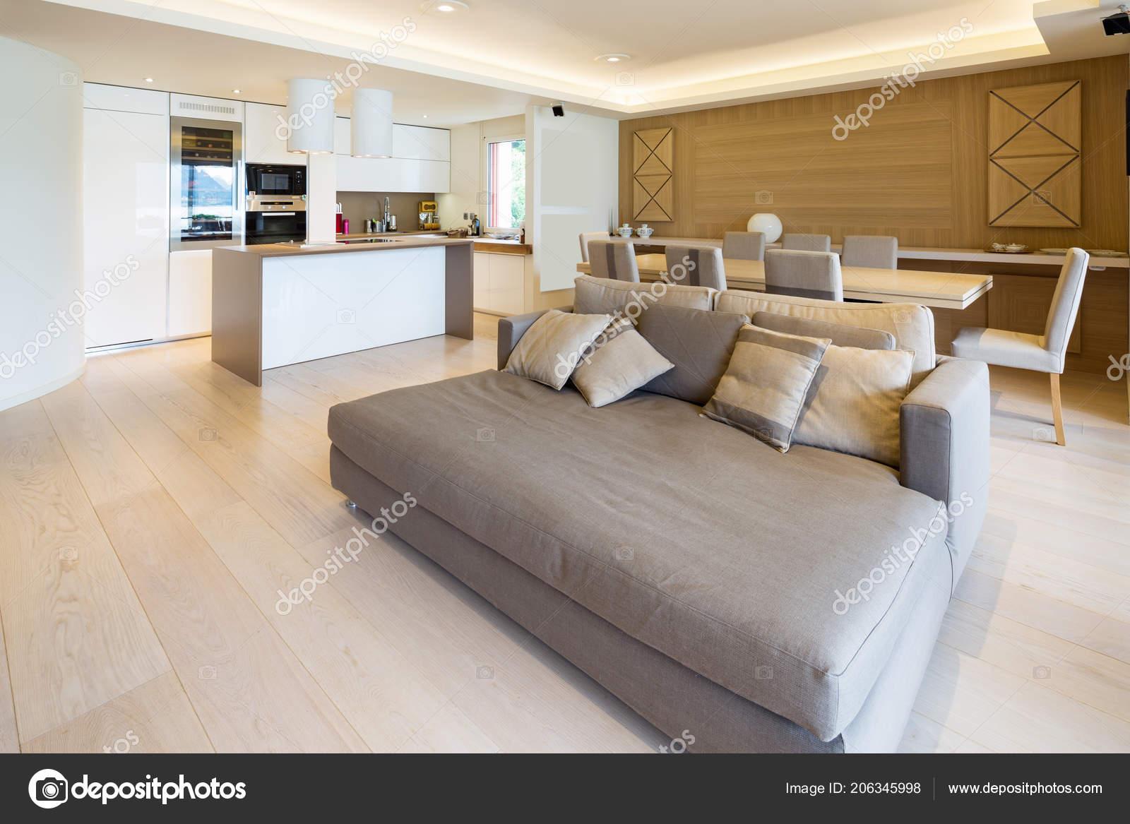 Spacious Living Room Modern Apartment Parquet Elegant Sofa ...