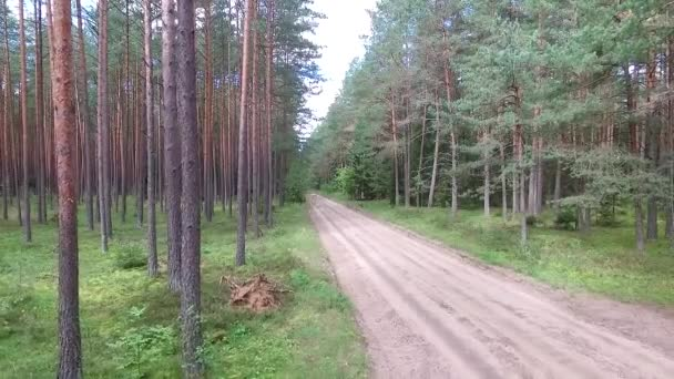 car passing by on gravel road in forest