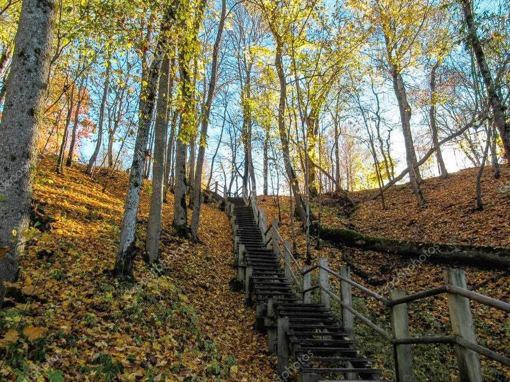 Wooden steps of the hiking trail in Gauja river valley, Sigulda, Latvia