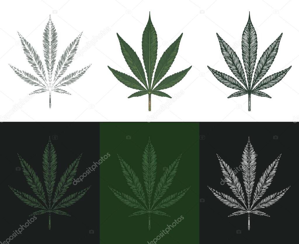 Icon0 Com Free Images Free Vector Free Photos Free Icons Free Illustrations For Personal Commercial And Noncommercial Use Ganja
