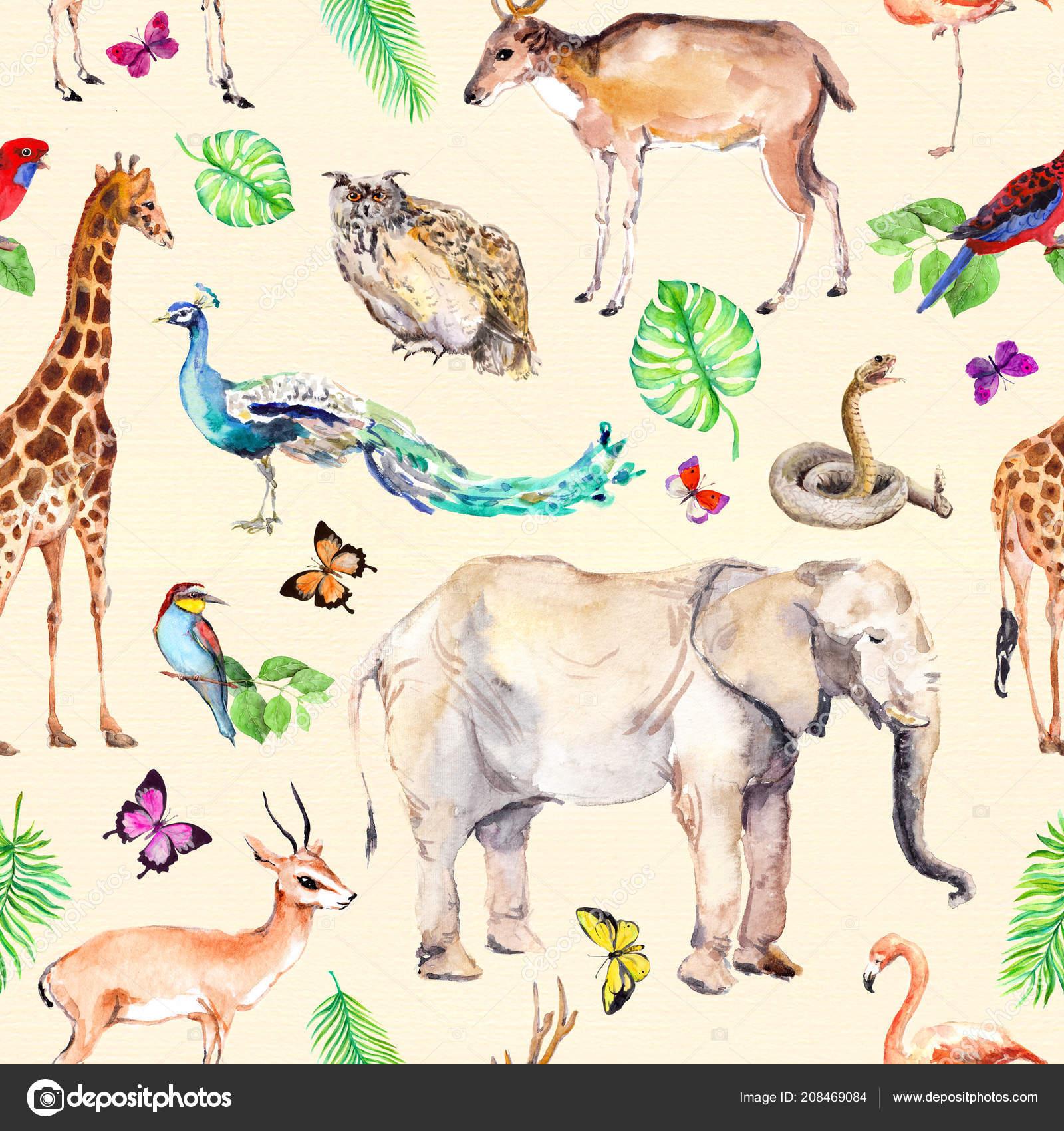 Salvajes animales y pájaros - zoológico, fauna - elefante, jirafa ...