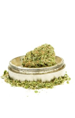 Close up view of dried marijuana and weed crusher on white background
