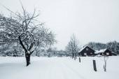 Fotografie Bäumen bedeckt mit weißen Schnee und Holzhäuser in Karpaten