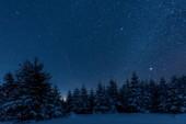 Fotografie dunklen Himmel voll von glänzenden Sternen in Karpaten im Winterwald in der Nacht