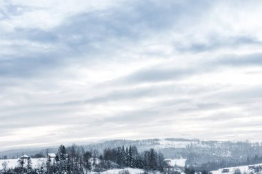 scenic view of snowy carpathian mountains and cloudy sky in winter