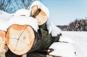 Selektivní fokus tvarovaných dřevěných klád sněhem