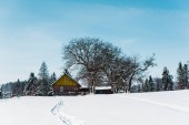 Fotografie small village in carpathian mountains near forest with traces on snow