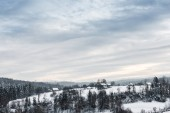 Fotografie landscape of carpathian mountains covered with snow with cloudy sky and trees