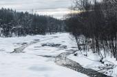 Cold creek v zimním lese stromy na pobřeží