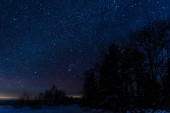 starry dark sky and trees in carpathian mountains at night in winter