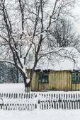 staré omšelé domu s plotem mezi stromy v zimě
