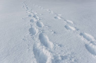 footprints on white clear snow with copy space