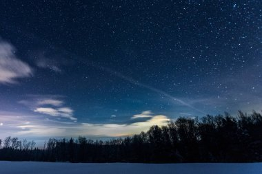 starry dark sky with sprucesin carpathian mountains at night in winter