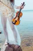 cropped view of beautiful woman in white swan costume standing on river background with violin