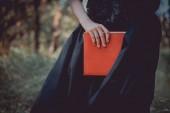 oříznutý pohled dospělé ženy na čarodějnické kostýmy stojící s červenou knihou