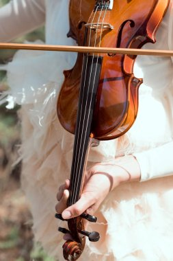 cropped view of elegant woman in white swan costume playing on violin