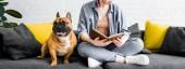 Panoramaaufnahme der niedlichen Bulldogge, die auf dem Sofa mit einem Mädchen sitzt, das Buch liest