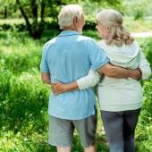 cheerful retired man hugging happy senior wife in green park