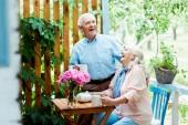 selektivní zaměření šťastného staršího muže smějící se veselé ženě v blízkosti růžových květin