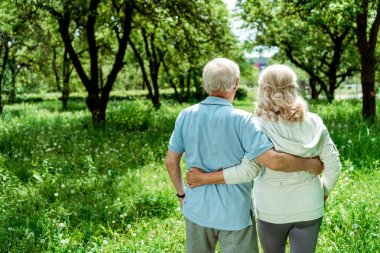 Back view pensioner hugging senior wife in green park stock vector
