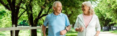 panoramic shot of cheerful retired woman running near senior husband in park