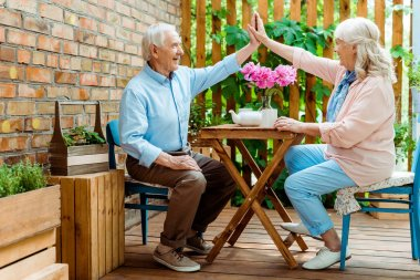 cheerful senior couple giving high five while sitting near pink flowers on terrace