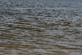 Photo selective focus of surface of river with waves