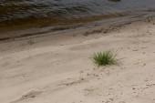 barna folyó partján homokkal és zöld fű