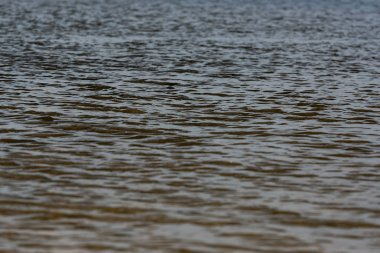 selective focus of surface of river with waves