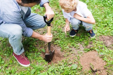 cropped view of father digging ground with shovel near son for planting seedling in park
