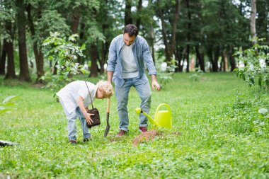 son planting seedling in ground near father in park