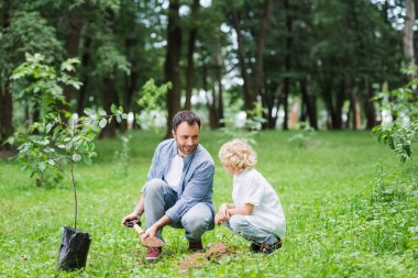 father and cute son during digging ground with shovel for planting seedling in park
