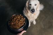 Abgeschnittene Ansicht der Frau hält Schale mit Haustier Futter in der Nähe entzückenden goldenen Retriever Hund
